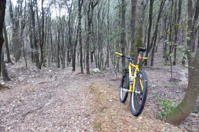 Mountain, biking, forest, Sardinia, Christmas
