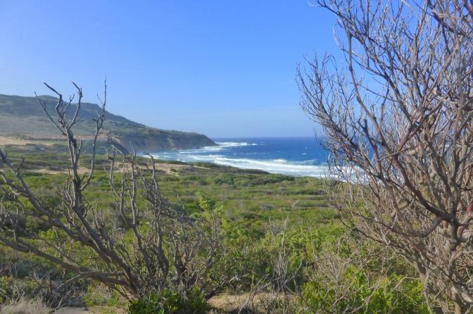 Sardegna, Seaview, beach