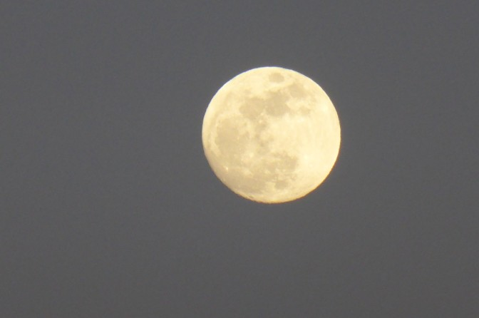 Moonlight, sky, Sardegna, holiday, outdoor stargazing