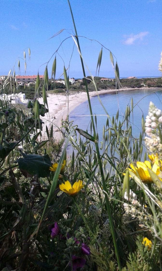 Calasetta, beach, Sardinia, travel