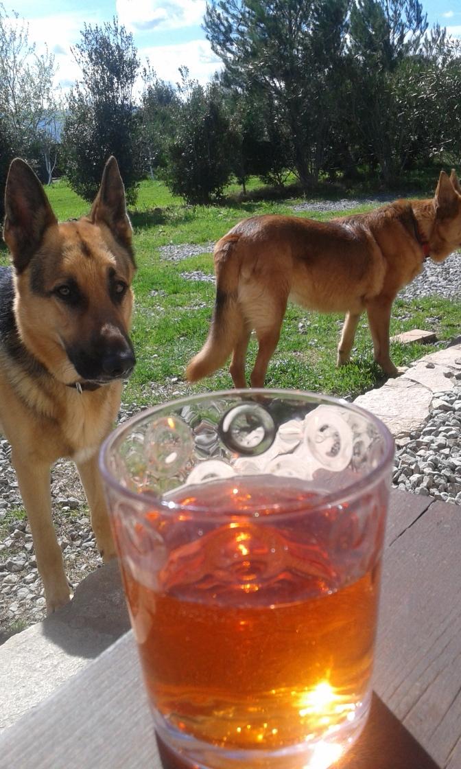 Drink, aperitivo, Sardegna, mediterraneo