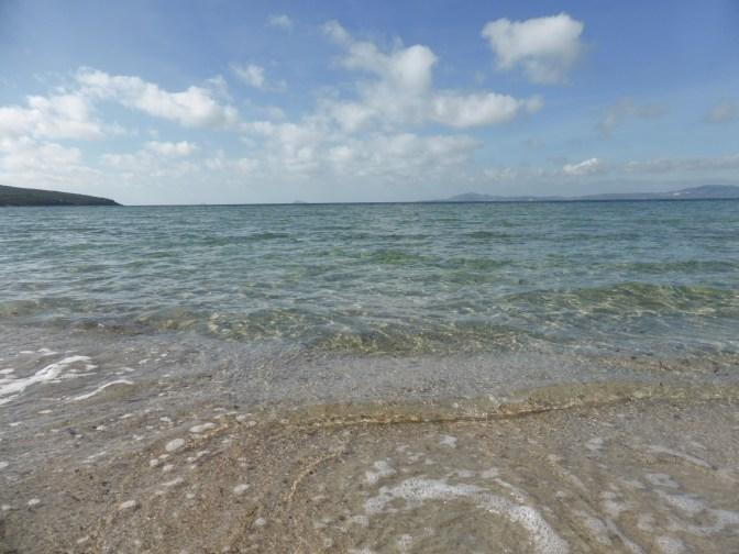 is solinas,beach,seashells,nature.
