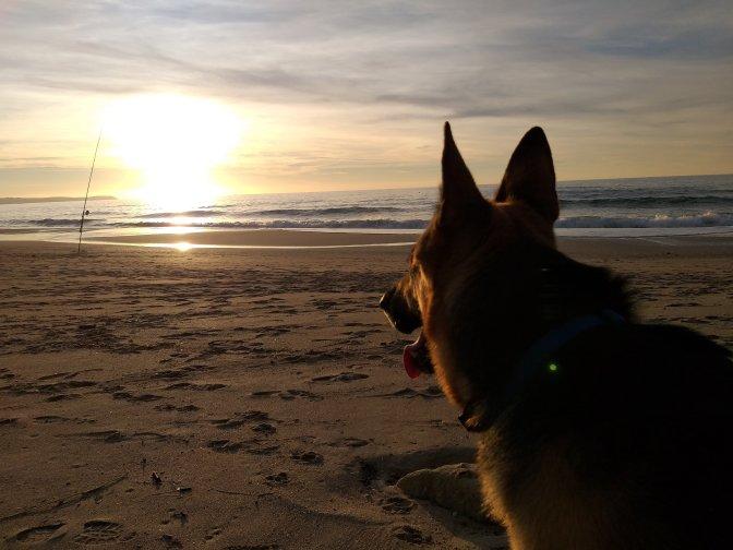 beaches,sardegna